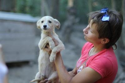 Наталія Когут: Одна справа говорити, які бідні і красиві тваринки, а інша – реально допомагати