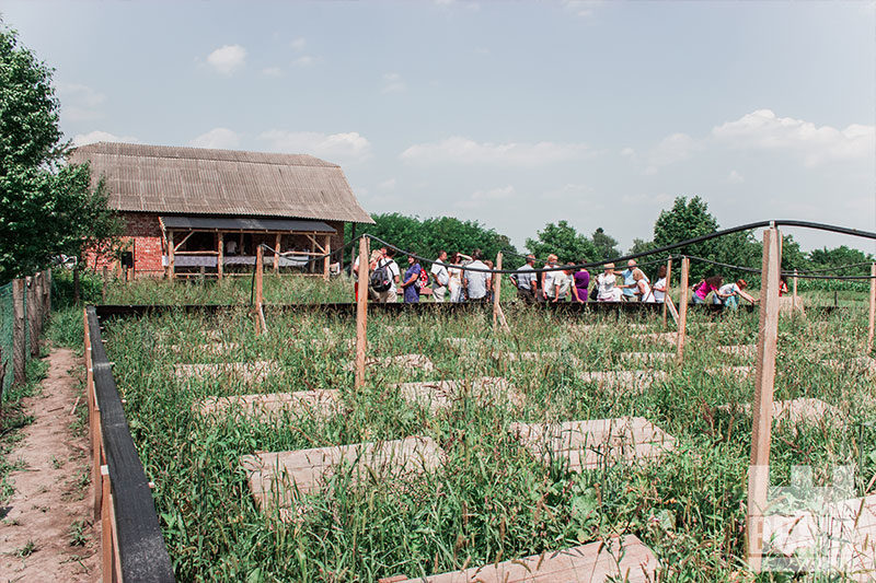 Покуття туристичне: як з'явилася равликова ферма у Копачинцях (ФОТО)