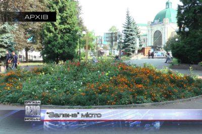 Сезонну обрізку дерев розпочали в Івано-Франківську (ВІДЕО)