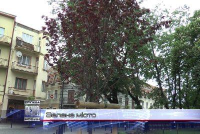 У Парку відпочинку ім.  Шевченка облаштують дитячу спортивну зону (ВІДЕО)