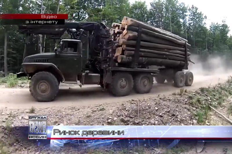 Електронний обіг деревини запровадили на Прикарпатті (ВІДЕО)
