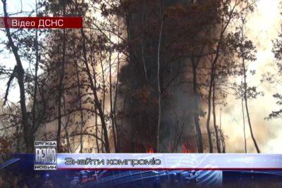 Івано-франківські чиновники радять, що робити з опалим листям (ВІДЕО)