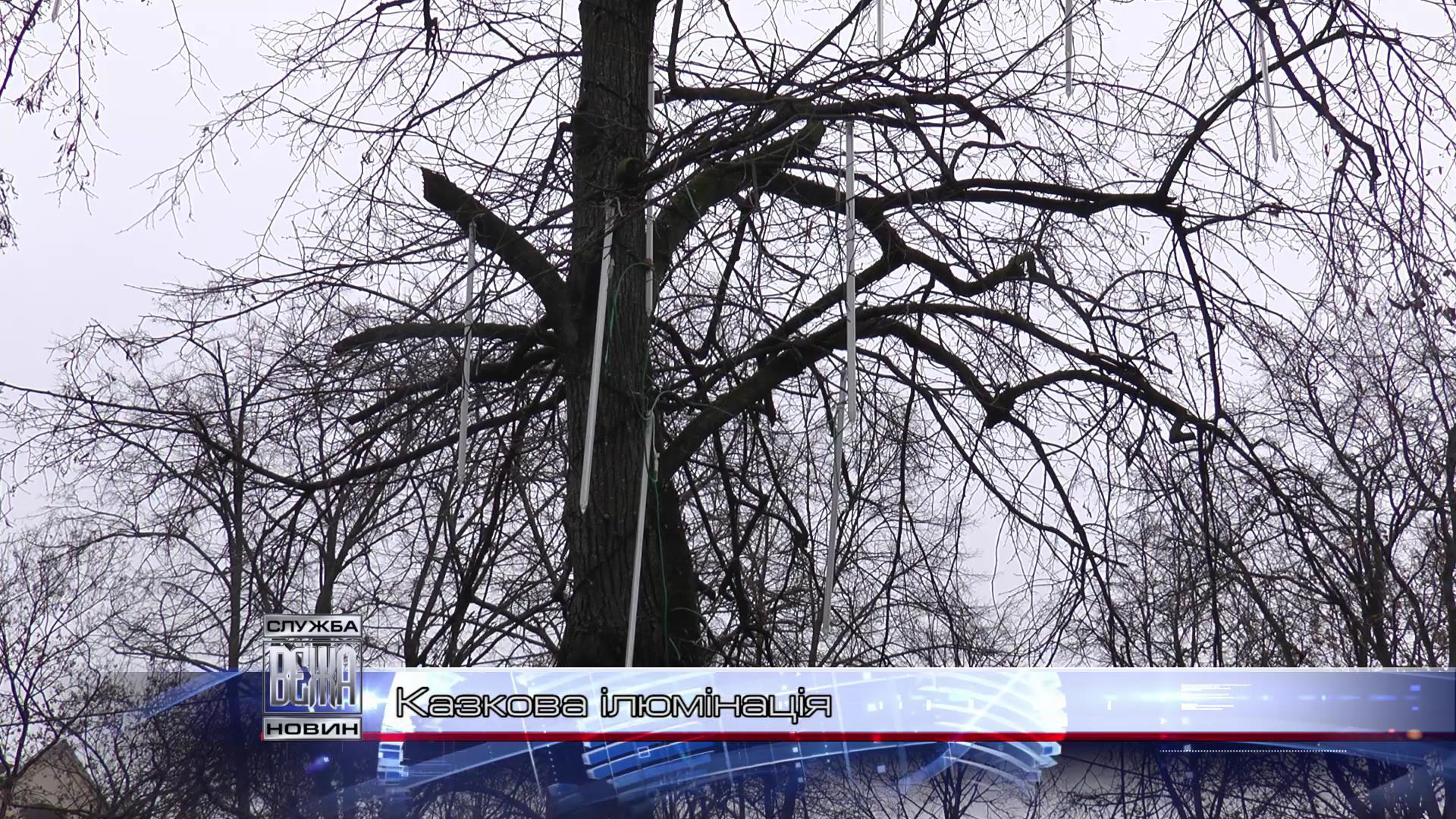 Комунальники готують Івано-Франківськ до новорічно-різдвяних свят[18-41-01]