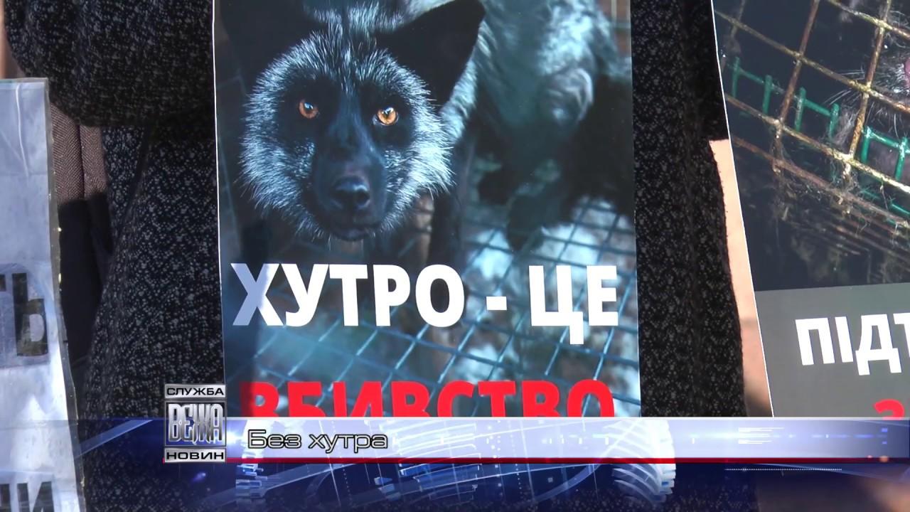 Івано-франківські зоозахисники підтримали законопроект про заборону хутроферм в Україні  (ВІДЕО)