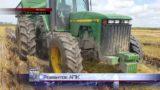 Прикарпатські агропідприємства отримують співфінасування із держбюджету  (ВІДЕО)